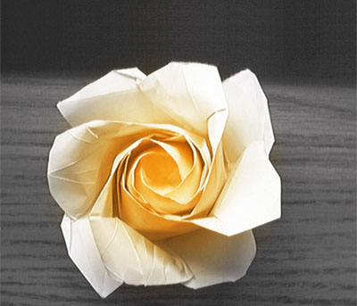 Схема. Роза мечты.